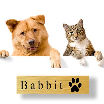 Bild von Schilder für Hunde- und Katzen